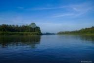 Kinabatangan River, Sukau, Borneo