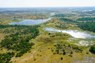 Flug über Okavango Delta, Botswana