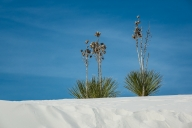 2018-03-21-white-sands-nm-new-mexico01030