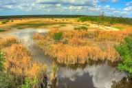 2018-02-27-everglades-np-hdr2-2