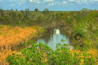 2018-02-27-everglades-np-hdr5-4